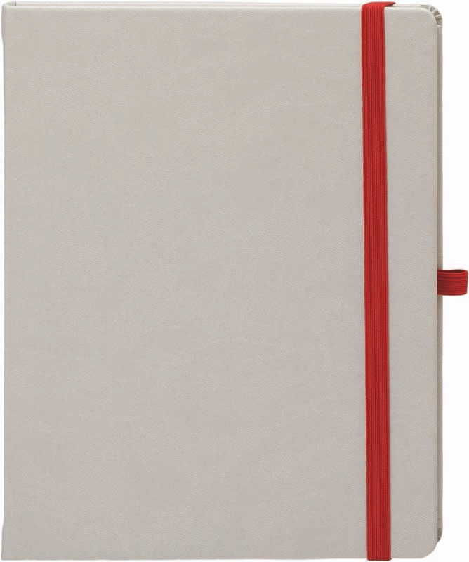 Margy Consultants Notebook Pro Cv6